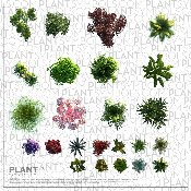 Plant Symbol© Library Two [Photo-realistic]