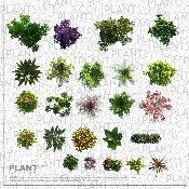 Plant Symbol© Library Three [Photo-realistic]
