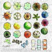 Plant Symbol© Library Five [Hand Drawn]